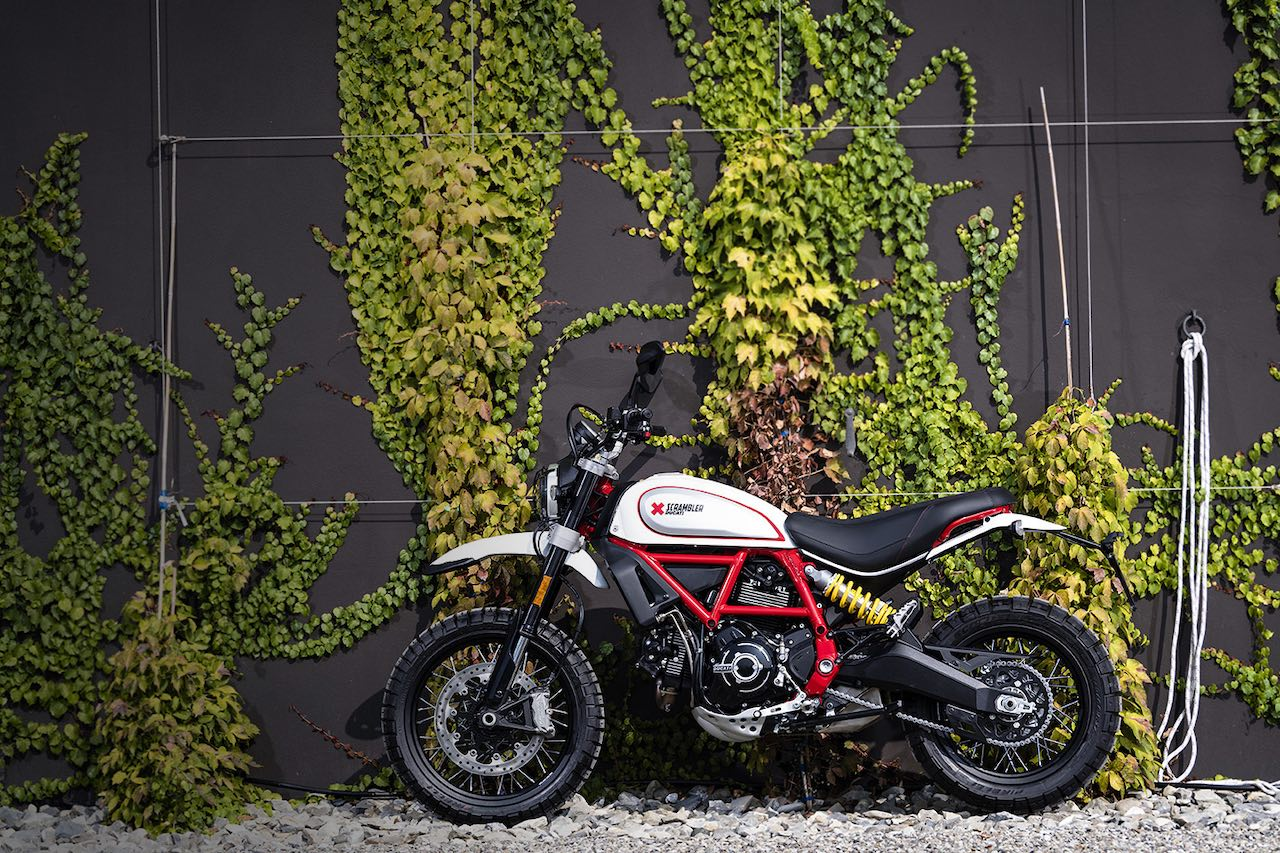 Ducati Desert Sled 2019 against a wall with foilage