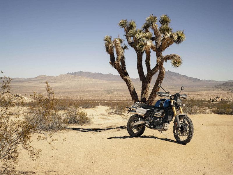 Triumph Motorcycles Scrambler 1200 XE