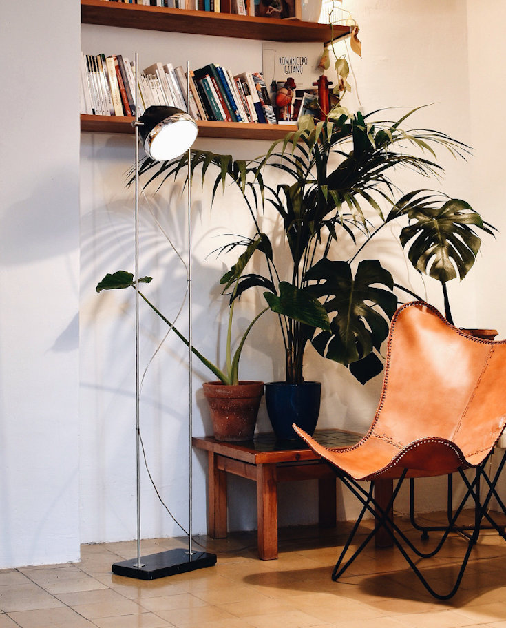 Halley R-Lamp in Apartment - plants and bookshelf as background